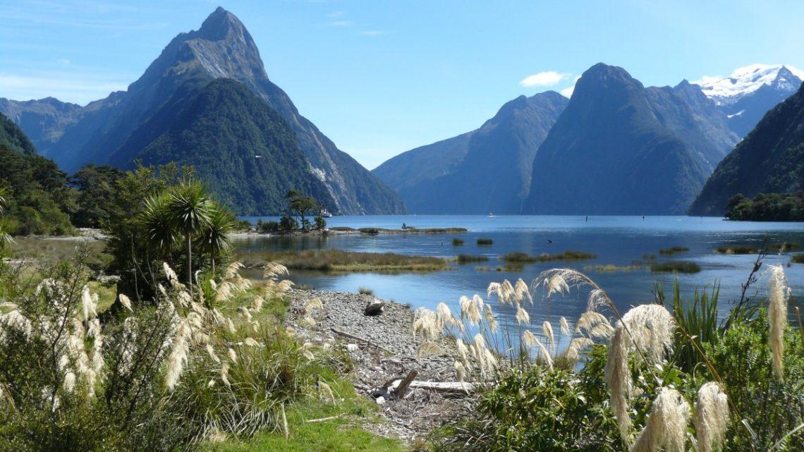 Le top des activités de vacances à ne pas manquer en Nouvelle-Zélande